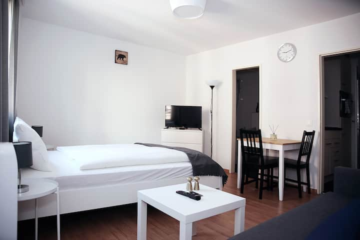 Crux 2 - Studio Apartment - Luzern city