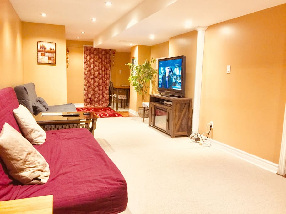 """Living Room equipped with Sofabed, Fire Place and 46"""" Sony TV with Netflix"""