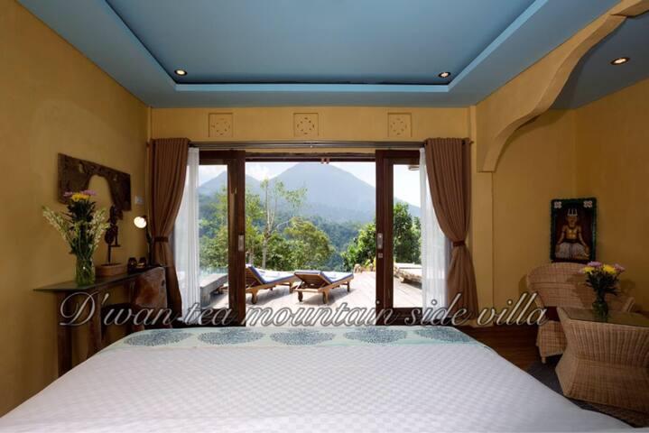 D`Wan Tea mountain View junior suite Room