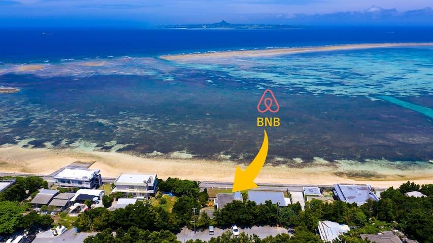 海の前でBBQ!Sea tutle beach with Bise Fukugi Tree Road