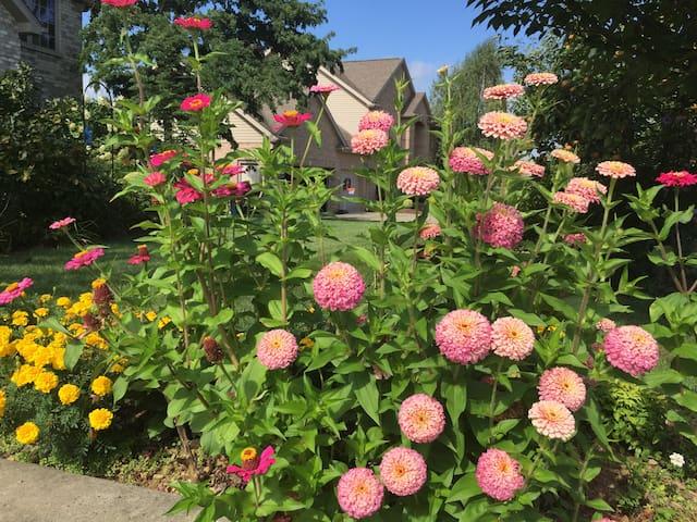 Front yard garden beautiful flowers.