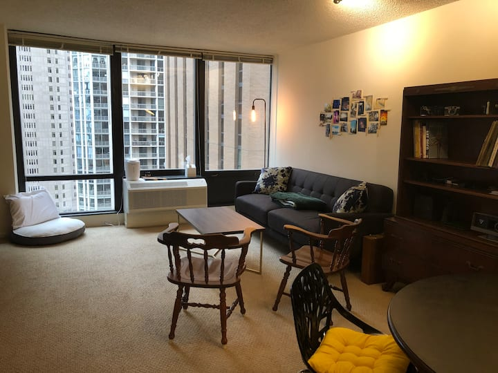High Rise Apt, Heart of Chicago