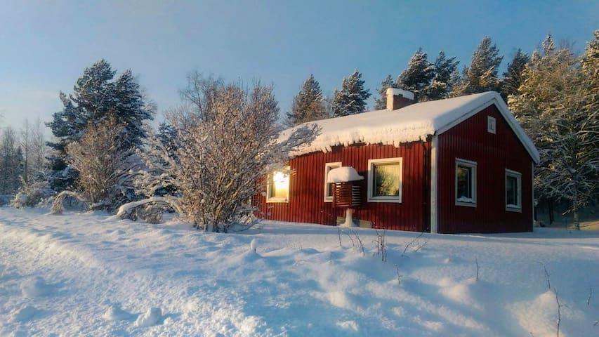 Swedish Lapland, cottage near lake, dogsled, boat