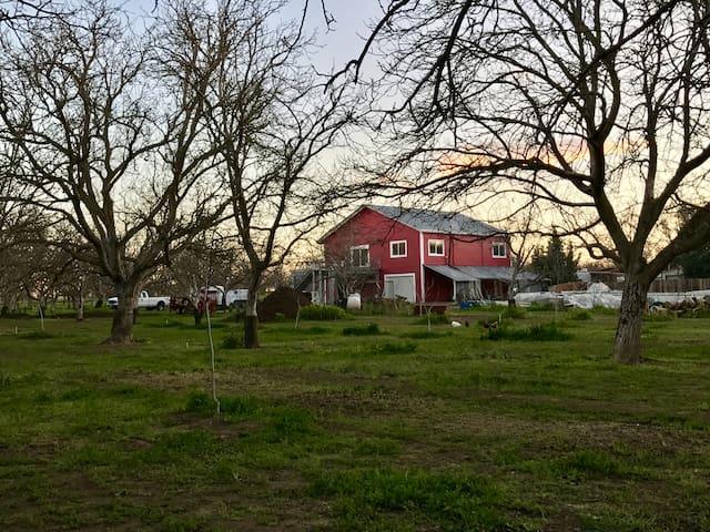 Big Red Barn-2 Master Suites