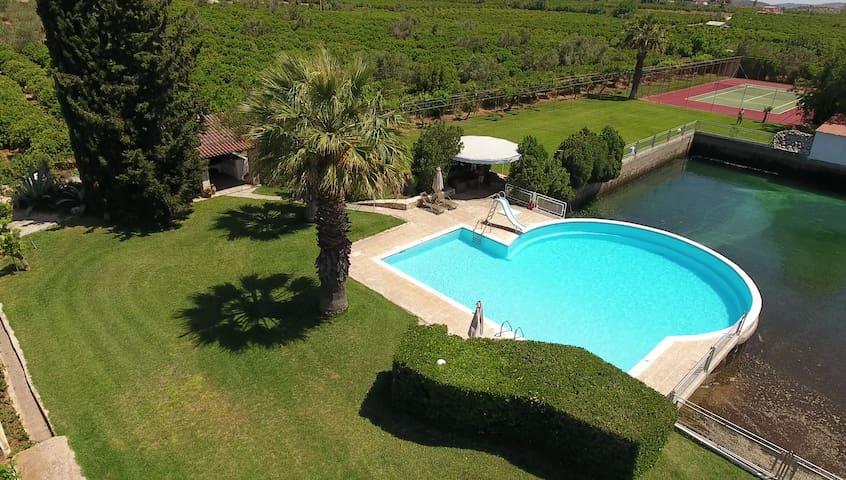 Orange Grove Villa