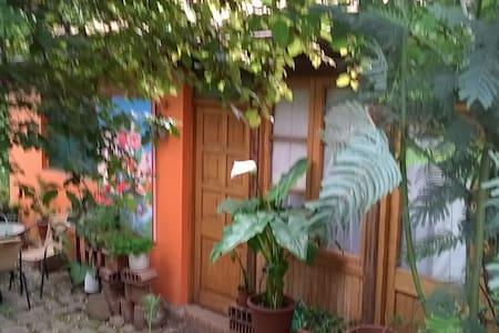 Habitación en ambiente natural, - Lo Barnechea
