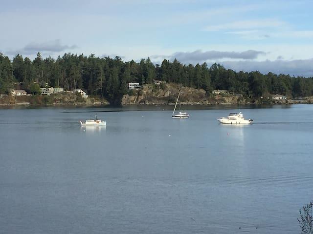 Sidney (Victoria area) Ocean View Condo
