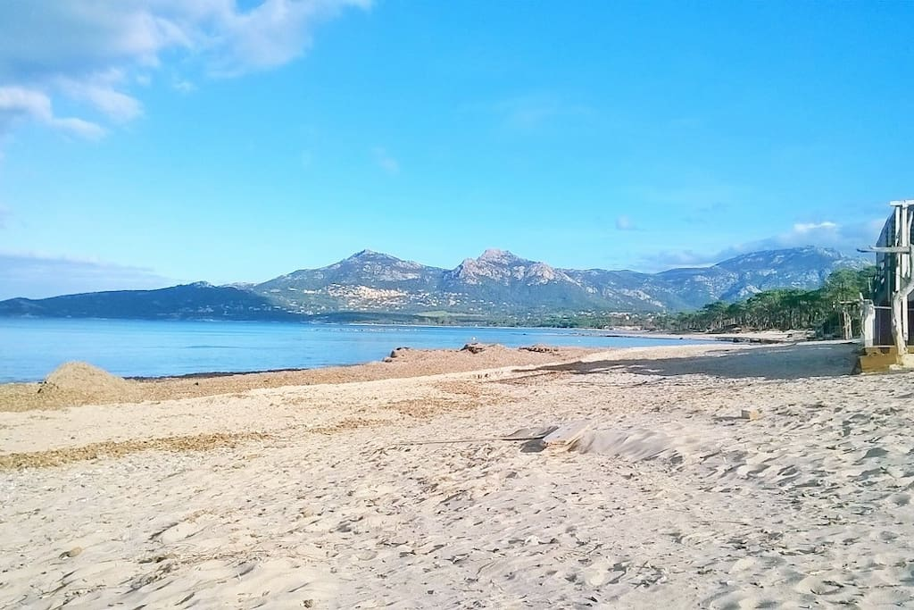 plage de Calvi