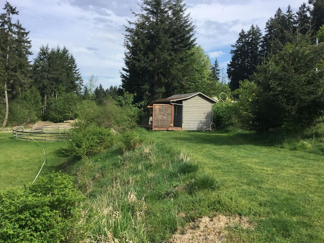 Cozy one room cabin with hot water outdoor shower - Errington