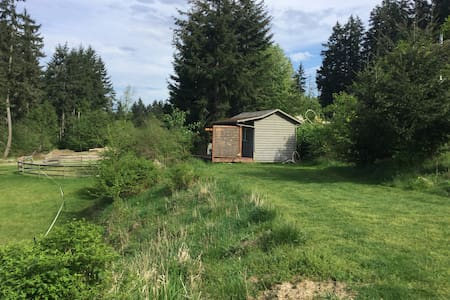 Cozy one room cabin with hot water outdoor shower - Errington - Kunyhó