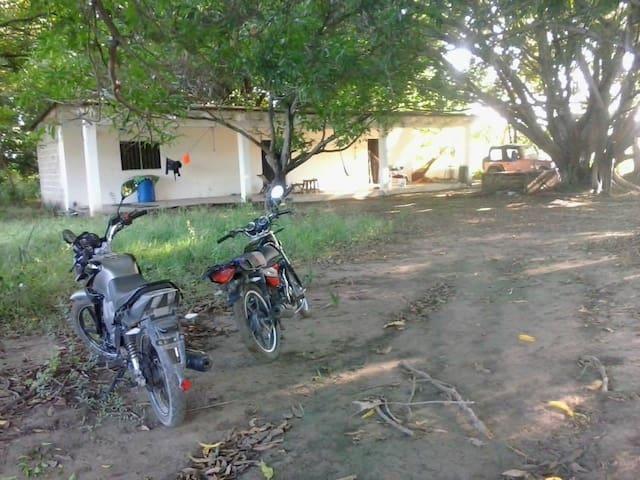 CAMPING ROOM - Tehuantepec - Casa