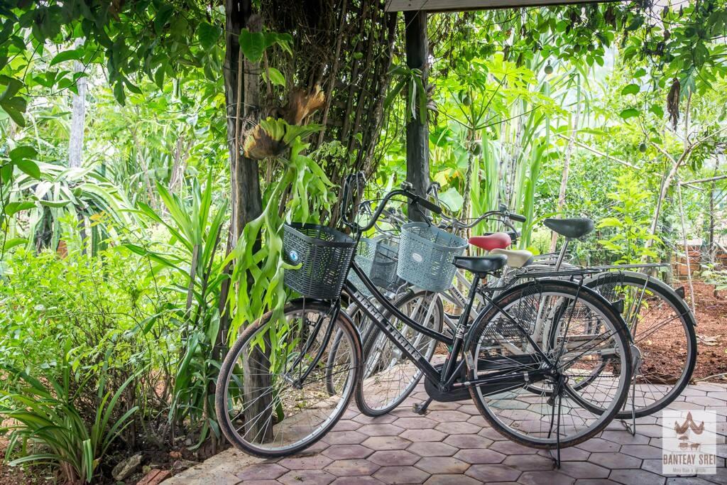 Vélos et tuk tuk disponibles
