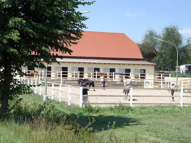 Gästezimmer idyllischer Pferdehof