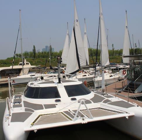 Han River Catamaran Boat! Seoul No1! Private Party