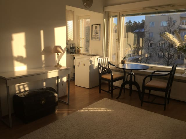 Newly Renovated with Amazing Natural Light
