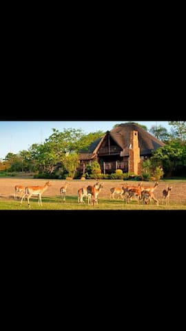 Kruger Park Lodge Unit:17 - Hazyview