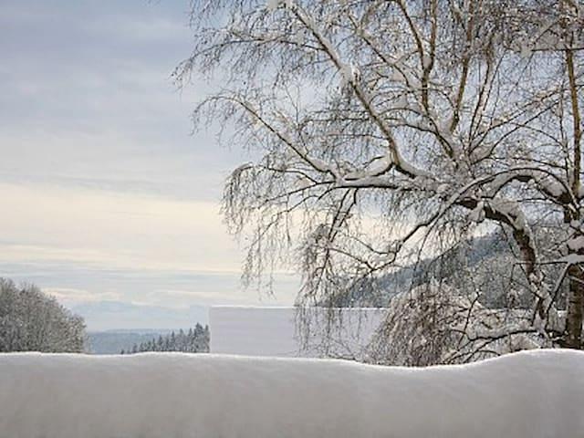 Schwarzwaldbauernhaus Wutach - Wutach - Dom