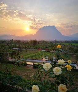 Phuvara private villa - Chiang Dao - Domek parterowy