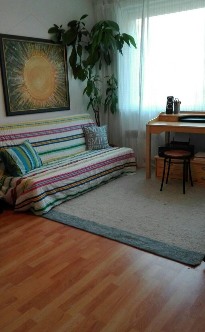3 Monate Single-Wohnung zu vermieten