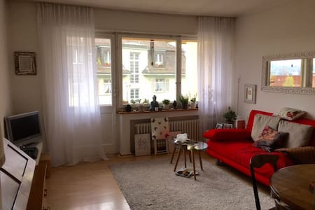 Cosy Flat in Town just by the Lake - Curych - Kondominium