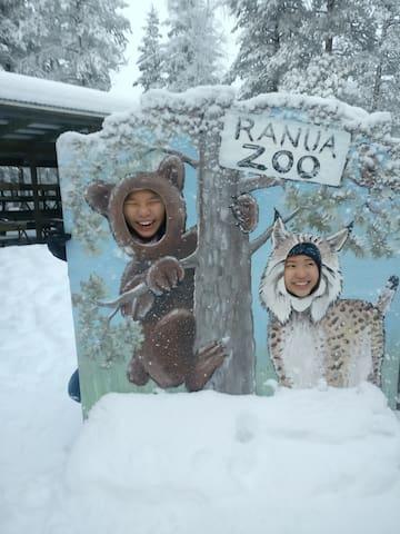 Bear with lynx.