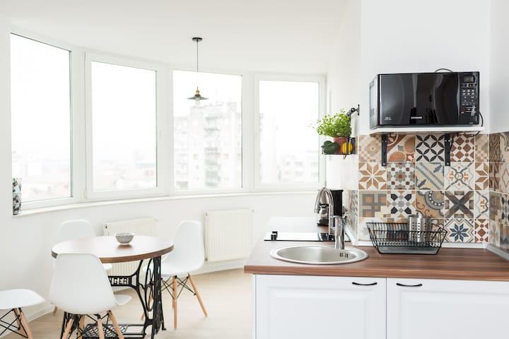 Brâncusi apartment