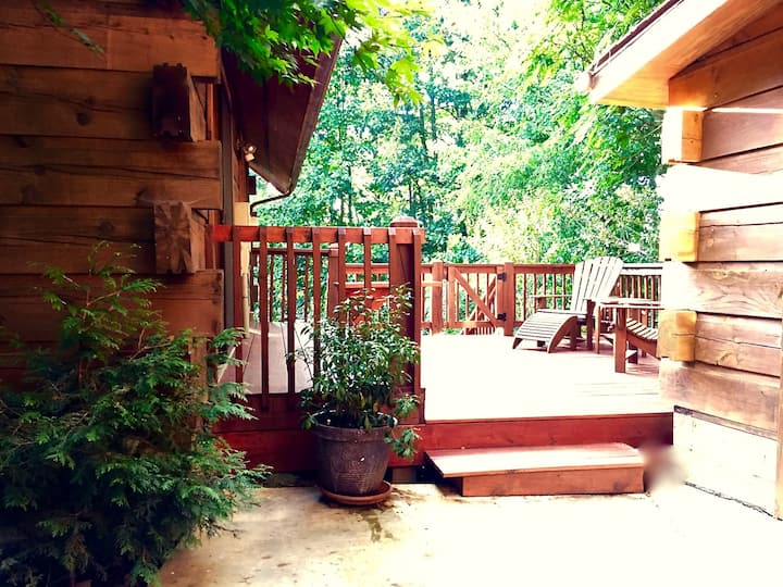 Log Cabin Apartment Close To Asheville