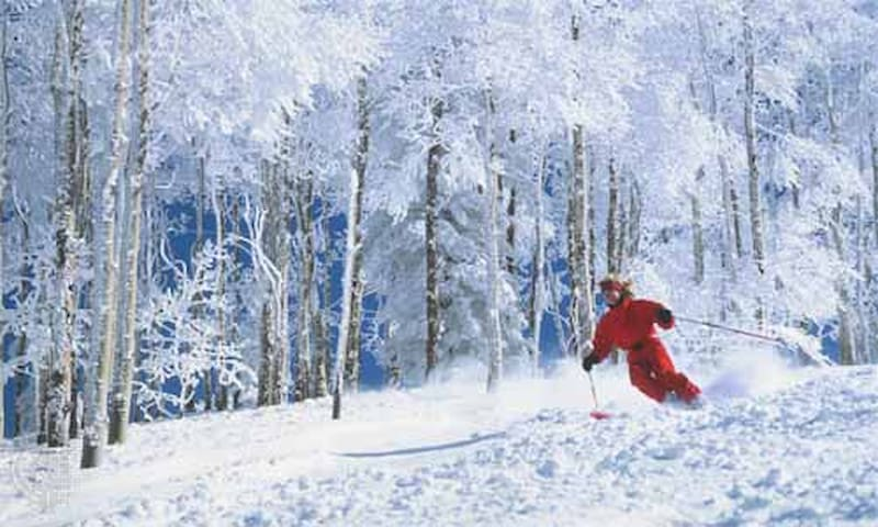 Ski in Vail Valley this Christmas, in Colorado!