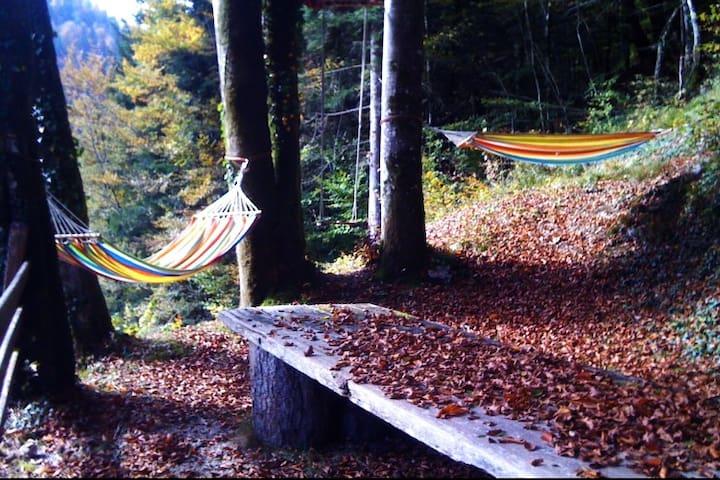 La maisonnette sous les arbres (Doubs)