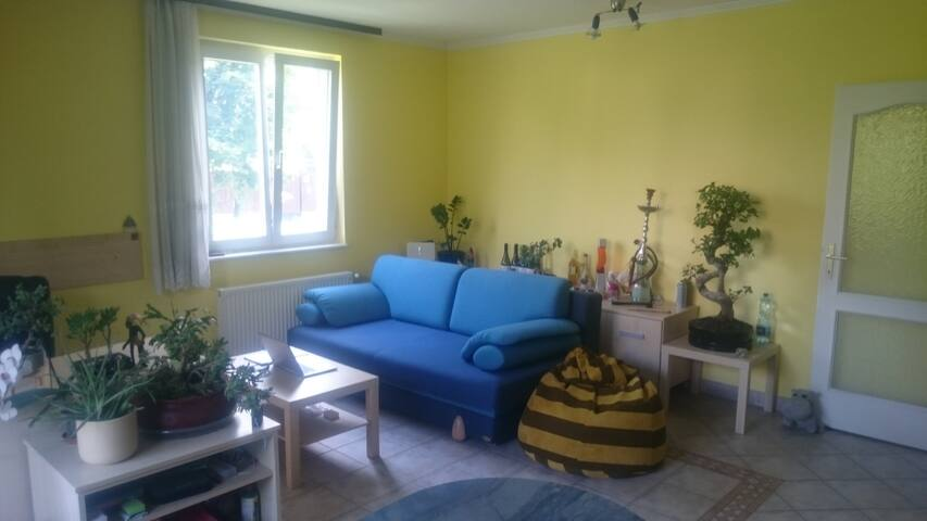 Cozy flat in the suburbs close to the city center - Budapest - Apartment
