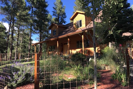 The Sprouted Grain Mountain Retreat - Ruidoso - Dom