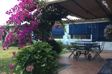 B&B Rosa dei venti_Levante - Lipari - Bed & Breakfast