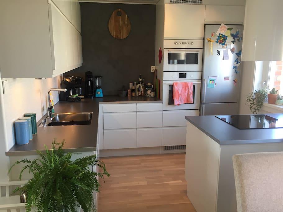 Kjøkken. Ovn, mikro,kjøleskap,fryser, oppvaskmaskin og stekeplater