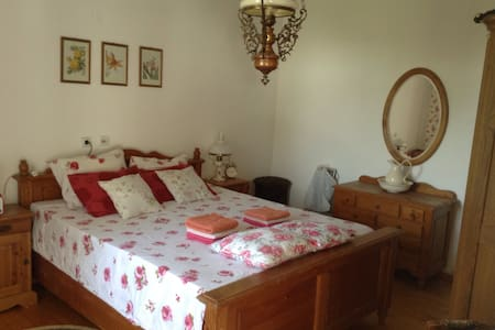 Farmhouse (king) - Sombor