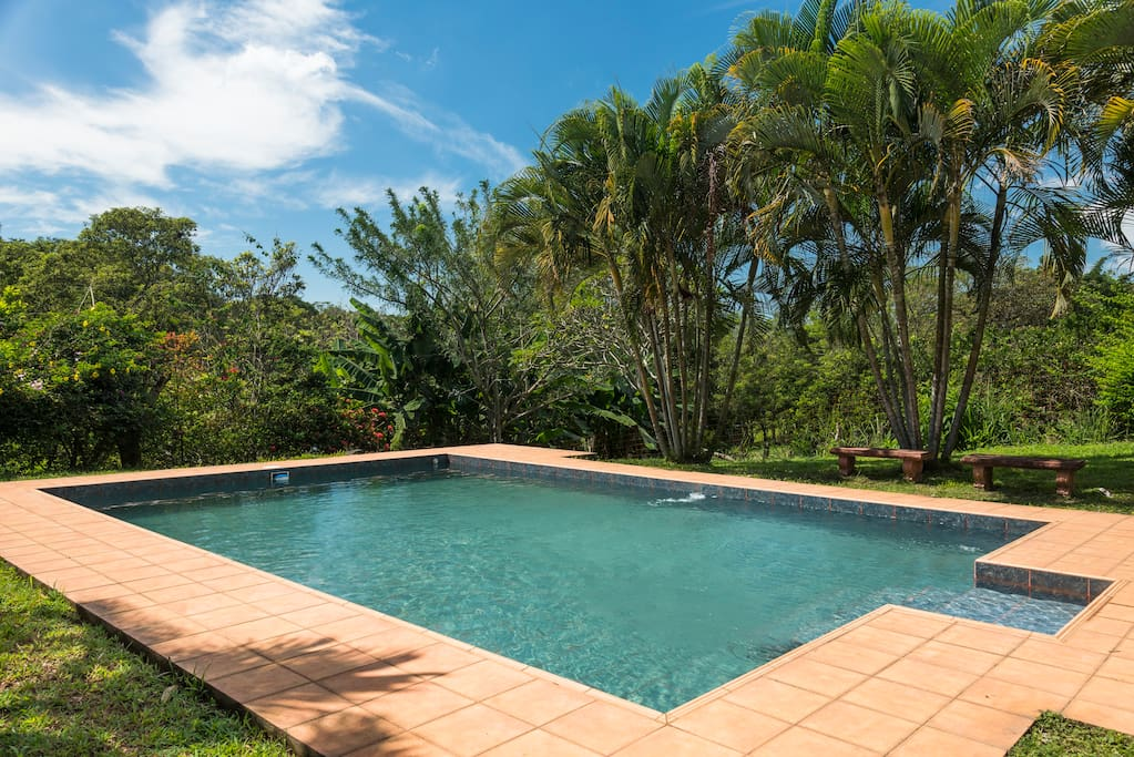 Huge pool in luscious green garden. The deep end is 1,5 metres deep and the shallow end 1m deep.