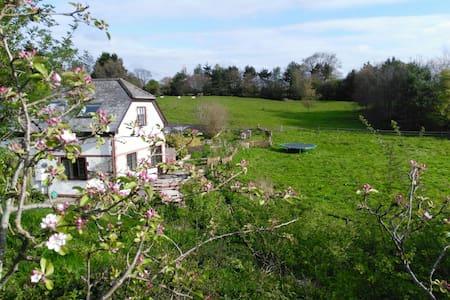 Coaxdon Barn holiday cottage