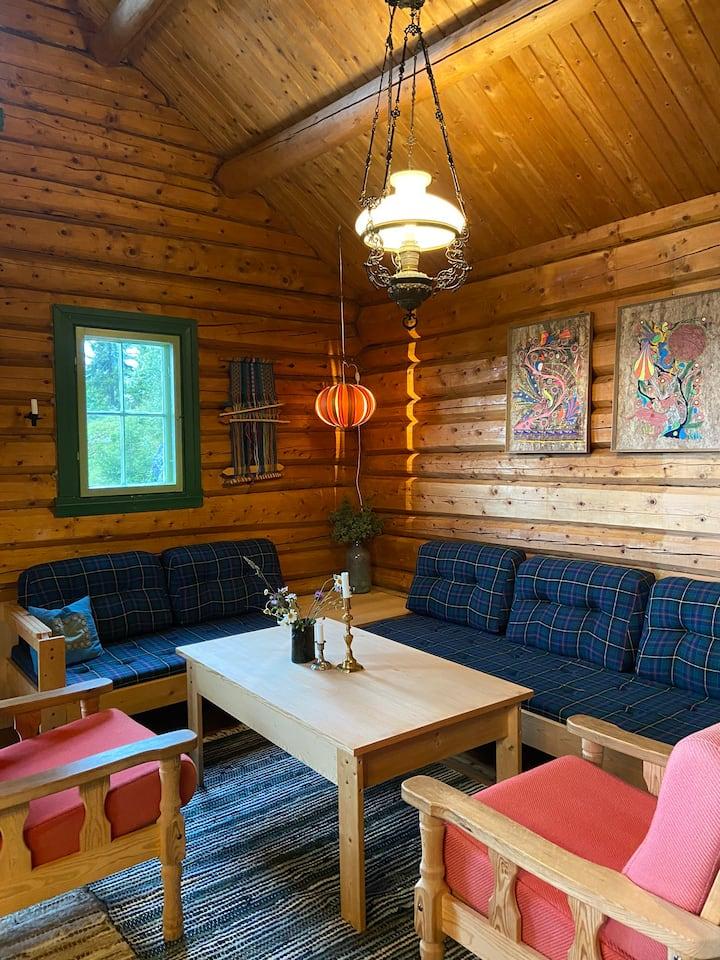 Solrig hytte med sjæl nær alpincenter