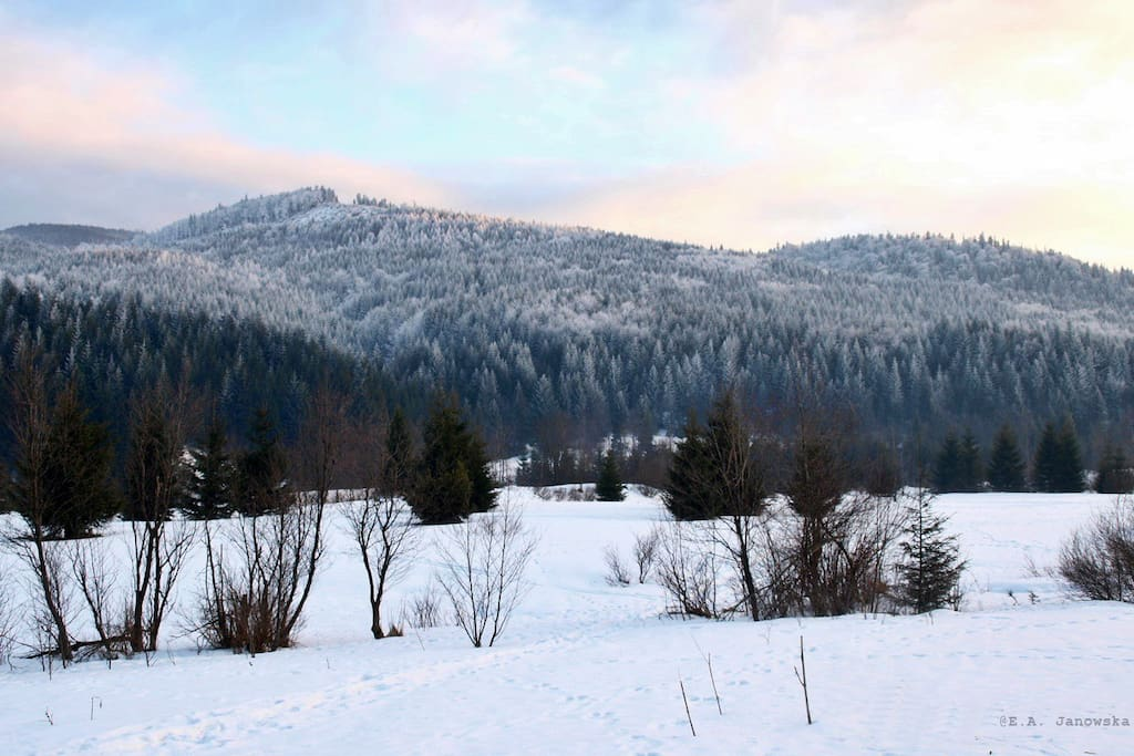 Lubomierz-Rzeki, Dolina Kamienicy. Autor: E. Janowska