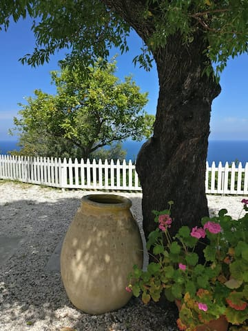 The breath taking view to the sea from the garden, filled with almond trees and a lemon tree
