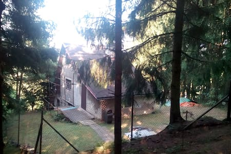 Cottage in the woods - Boskovice