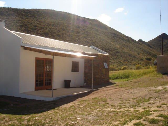 Coratina Eco friendly  - Kredouw Olive Estate - Prince Albert