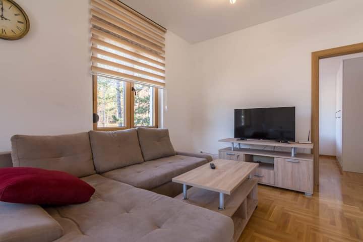 Apartman Veselinovic