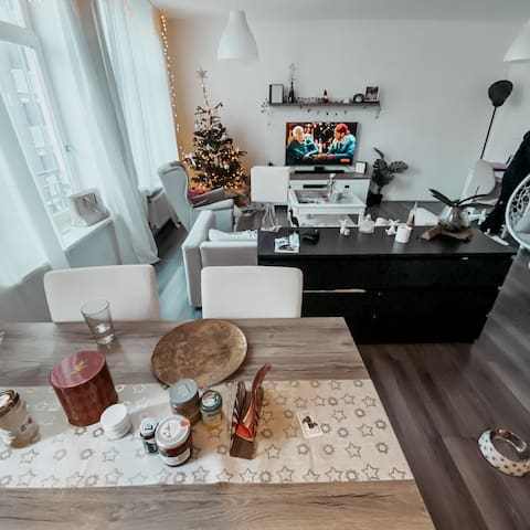 Beautiful 2 bedroom apartment in The Hague Center