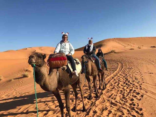 your night in sahara desert merzouga