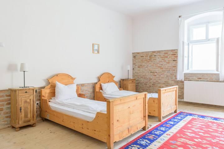 Biertan - Terrace Apartment