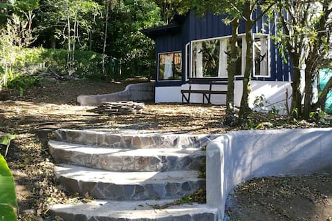 Casita Moss- in the Heart of Old Monteverde