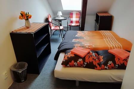 Podkrovní pokoj s manželskou postelí