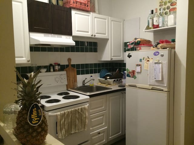 Clean and Cosy Apartment in Downtown Montreal