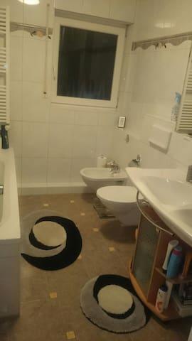 Big room/private bath near main train station - Wiesbaden - Apartemen