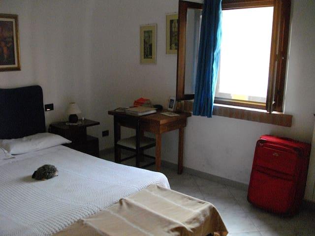 Camera con letto matrimoniale, Zona Porta Lucca - Piza - Dom